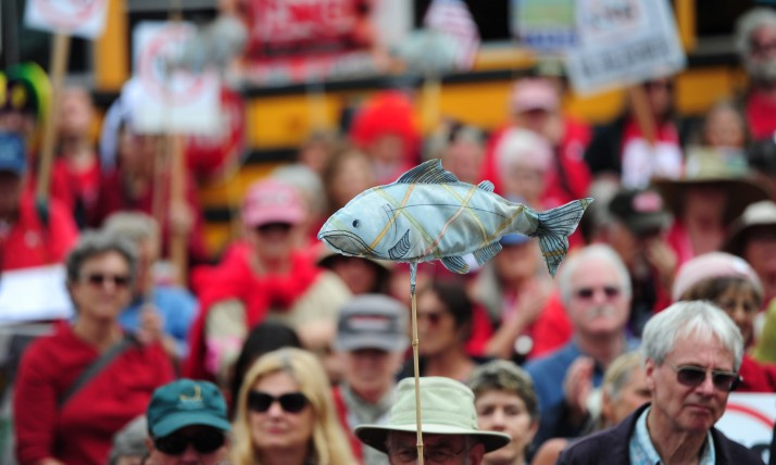No LNG Rally on May 26, 2015, in Salem, Oregon; in 2016 we defeated the project, photo by Alex Milan Tracey