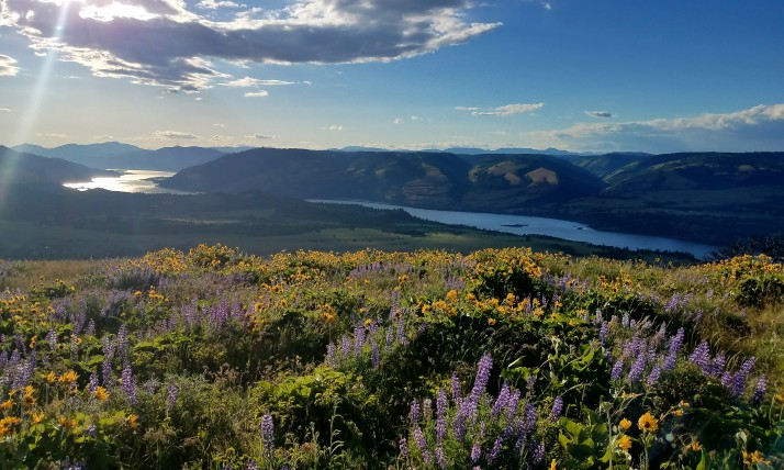 Columbia River Gorge at Tom McCall, photo by Mike Voyt