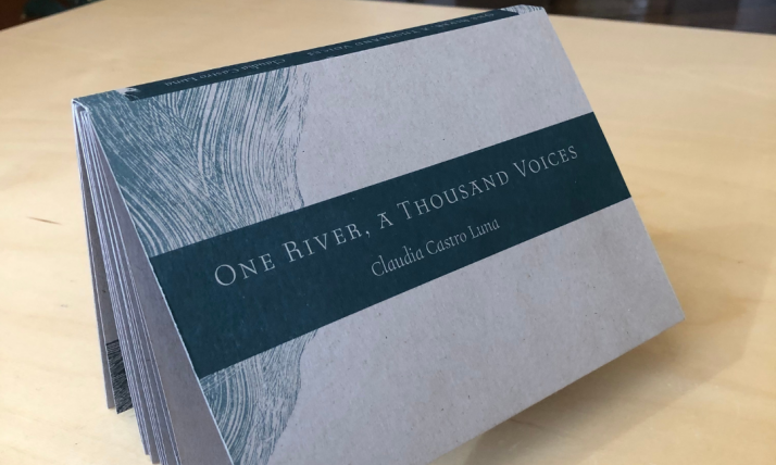Book: One River, a Thousand Voices by Claudia Castro Luna