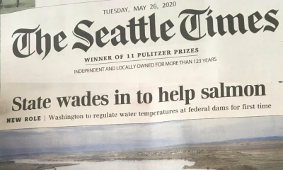 Seattle Times: State Wades in to Help Salmon