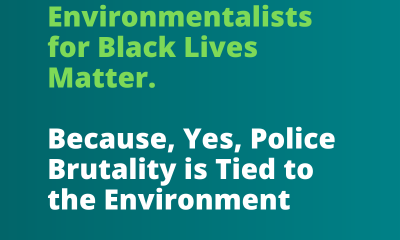 Environmentalists for BLM